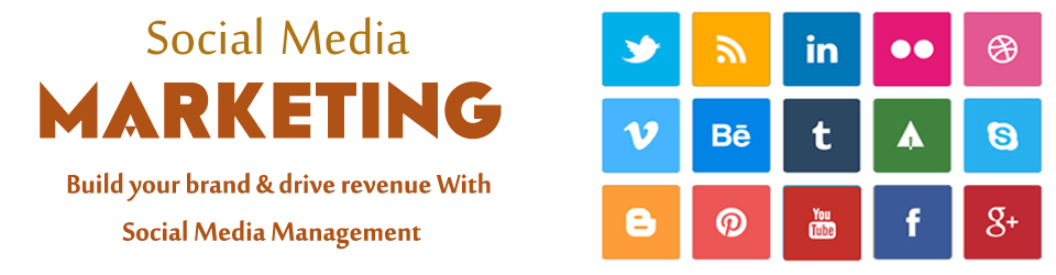 social-media-marketing-indianbusybees